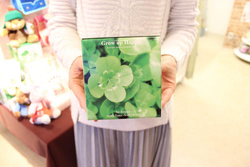 四つ葉クローバー栽培キット