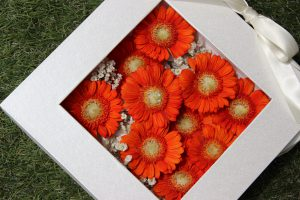プロポーズ花束保存加工専門店|コンパクトプランボックスM|プロポーズ花束保存ベスト4
