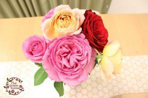 生徒からもらった花を鮮やかなままフレームの中で永久に|持ち込み時