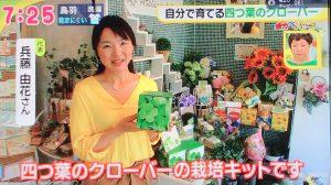 「ドデスカ!」で紹介されました アトリエ由花メディア出演情報 由花さん
