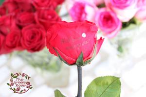 ナチュラルフレーム|花束の中に一輪だけプリザーブドフラワー